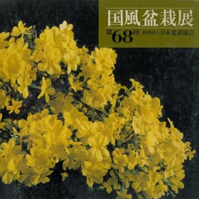 Catalogo Kokufu Bonsai Exhibition 68 - 1994 Vintage Edition