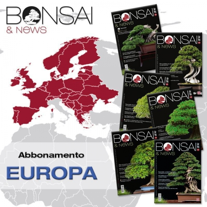 Abbonamento annuale BONSAI & news - EUROPA