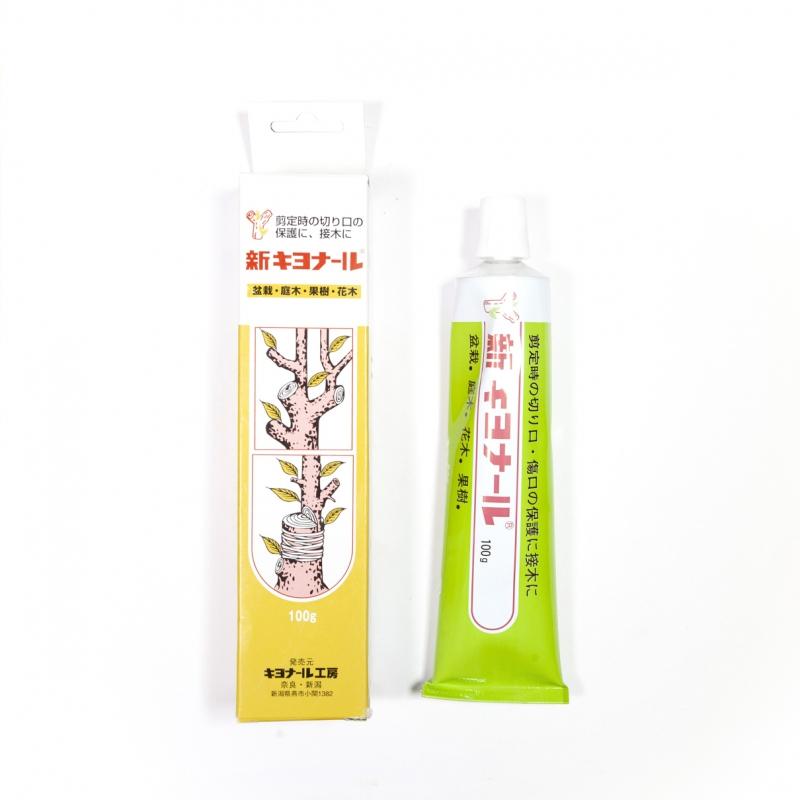Mastic japonais aromatisé tube 100 gr