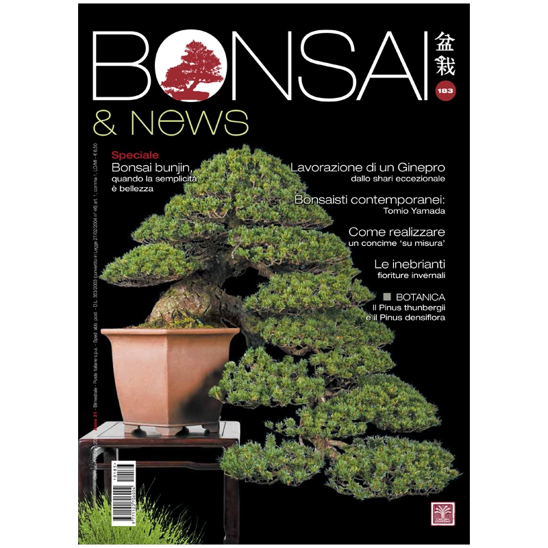 BONSAI & news 183 - January-February 2021