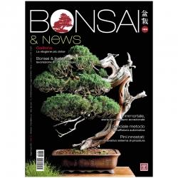 BONSAI & news 185 - May-June 2021