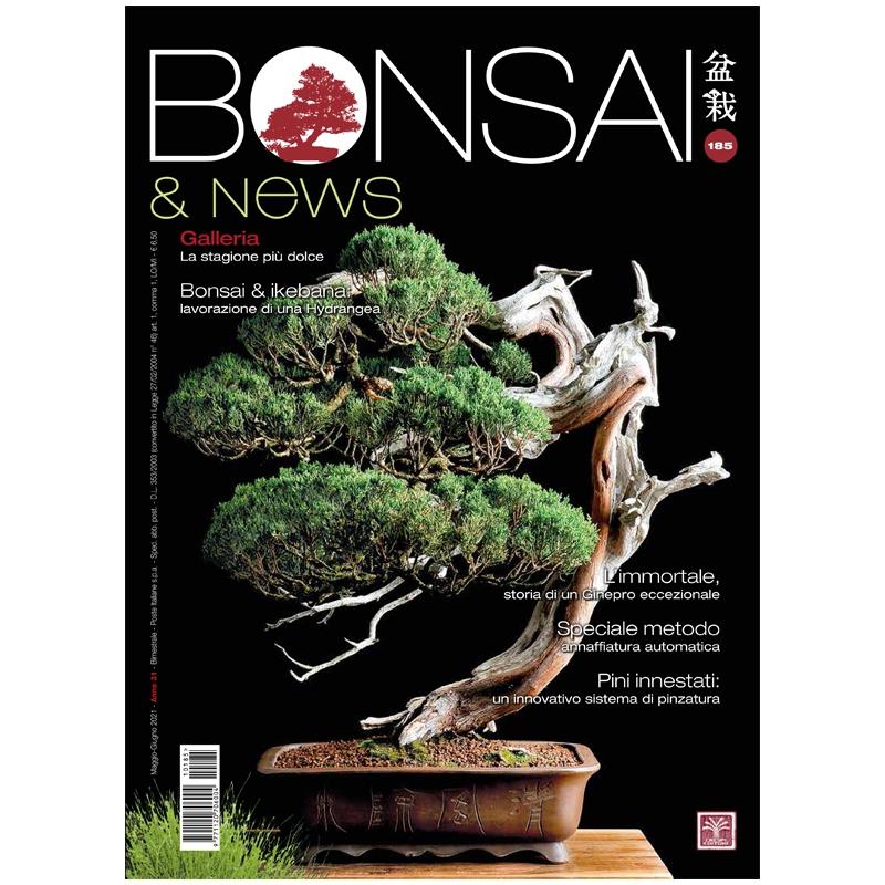 BONSAI & news 185 - Maggio-Giugno 2021