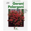 Gerani Pelargoni - Guida Piccole & Pratiche