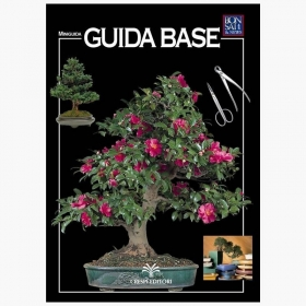 Guida Base - Miniguida BONSAI & news
