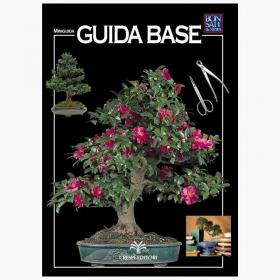 Guida Base - Miniguida BONSAI & news