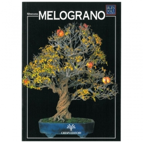Melograno - Miniguida BONSAI & news