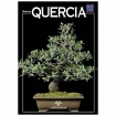 Quercia - Miniguida BONSAI & news