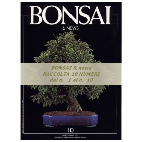 Raccolta BONSAI & news - dal n°  1 al n° 10