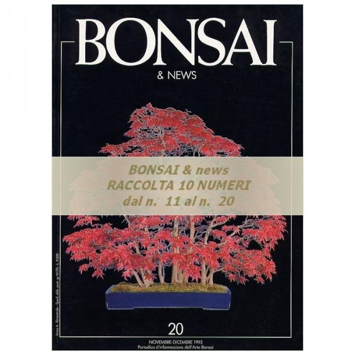 Raccolta BONSAI & news - dal n°  11 al n° 20
