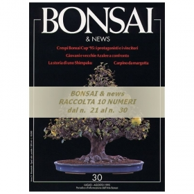Raccolta BONSAI & news - dal n°  21 al n° 30