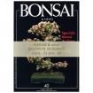 Raccolta BONSAI & news - dal n°  31 al n° 40