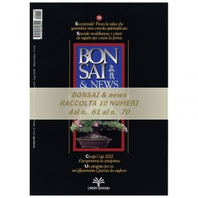 Raccolta BONSAI & news - dal n°  61 al n° 70