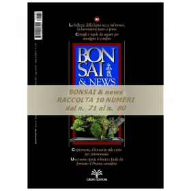 Raccolta BONSAI & news - dal n°  71 al n° 80