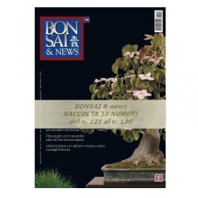 Raccolta BONSAI & news - dal n° 121 al n° 130