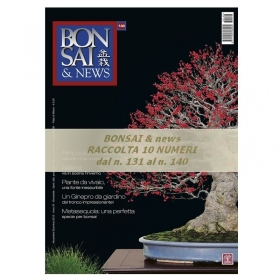 Raccolta BONSAI & news - dal n° 131 al n° 140