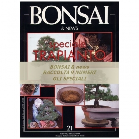 Raccolta BONSAI & news - numeri speciali
