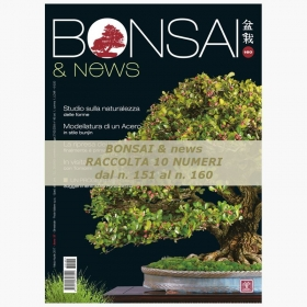 Raccolta BONSAI & news dal 151 al 160