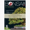 BONSAI & news Collection - from n° 151 to n° 160