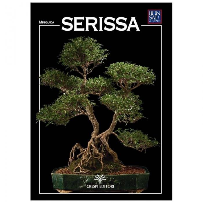 Serissa - Miniguida BONSAI & news