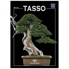 Tasso - Miniguida BONSAI & news