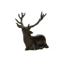 Tenpai cervo maschio sdraiato