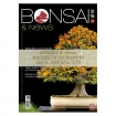 Raccolta BONSAI & news dal 161 al 170