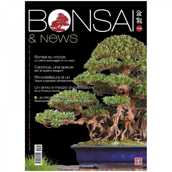 BONSAI & news 173 - Maggio-Giugno 2019