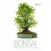 BONSAI - Ed. White Star - avec Crespi Bonsai Museum