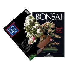 Spécial Azalée - BONSAI & news n. 40 et 131