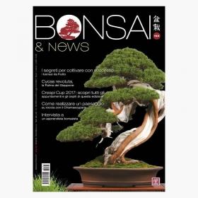 BONSAI & news 163 - Settembre-Ottobre 2017