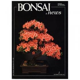 BONSAI & news n.   1 - Settembre-Ottobre 1990