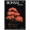 BONSAI & news 1 - Settembre-Ottobre 1990