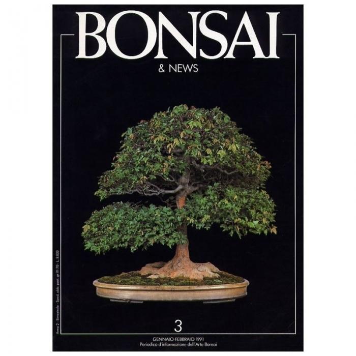 BONSAI & news n.   3 - Gennaio-Febbraio 1991