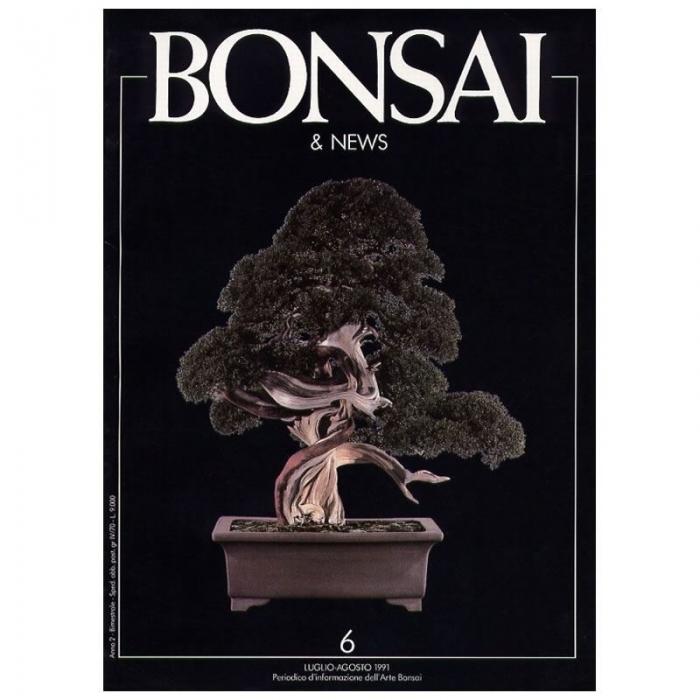 BONSAI & news n.   6 - Luglio-Agosto 1991