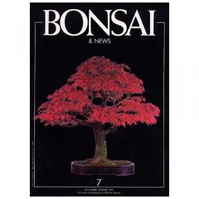 BONSAI & news n.   7 - Settembre-Ottobre 1991