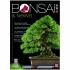 BONSAI & news 174 - July-August 2019