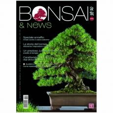 BONSAI & news 174 - Juillet-Août 2019