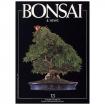 BONSAI & news n.  13 - Settembre-Ottobre 1992