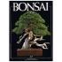 BONSAI & news n.  17 - Maggio-Giugno 1993