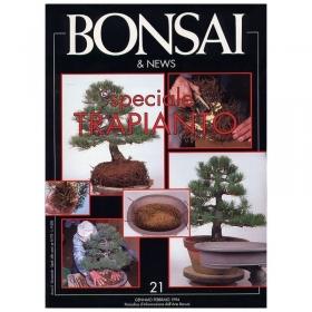 BONSAI & news n.  21 - Gennaio-Febbraio 1994