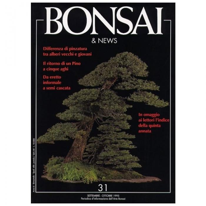 BONSAI & news n.  31 - Settembre-Ottobre 1995