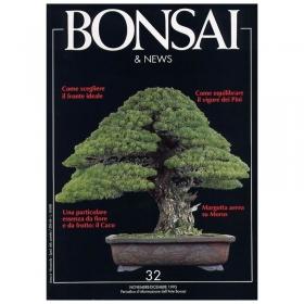 BONSAI & news n.  32 - Novembre-Dicembre 1995