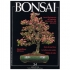 BONSAI & news n.  34 - Marzo-Aprile 1996