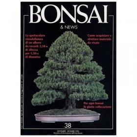 BONSAI & news n.  38 - Novembre-Dicembre 1996