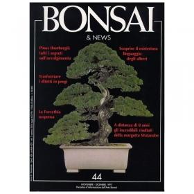 BONSAI & news n.  44 - Novembre-Dicembre 1997
