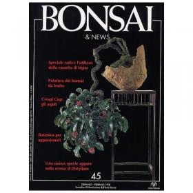 BONSAI & news n.  45 - Gennaio-Febbraio 1998