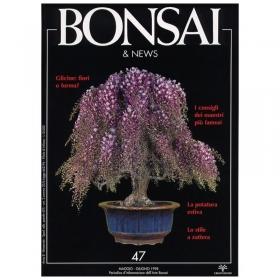 BONSAI & news n.  47 - Maggio-Giugno 1998