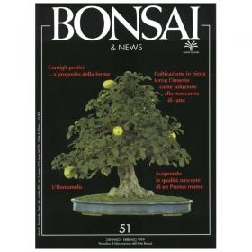 BONSAI & news n.  51 - Gennaio-Febbraio 1999