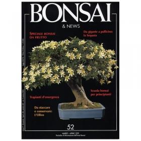 BONSAI & news n.  52 - Marzo-Aprile 1999