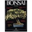 BONSAI & news 52 - Marzo-Aprile 1999